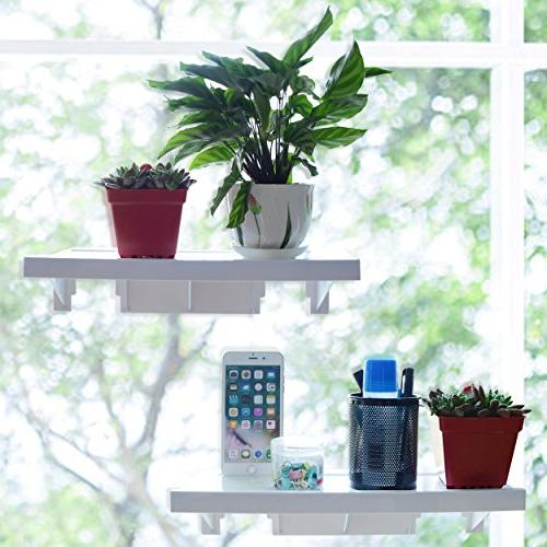Easy Eco Large Rack Plants Pots 15.4 5.4 to 22 Reusable Removable Residue Damage Installation