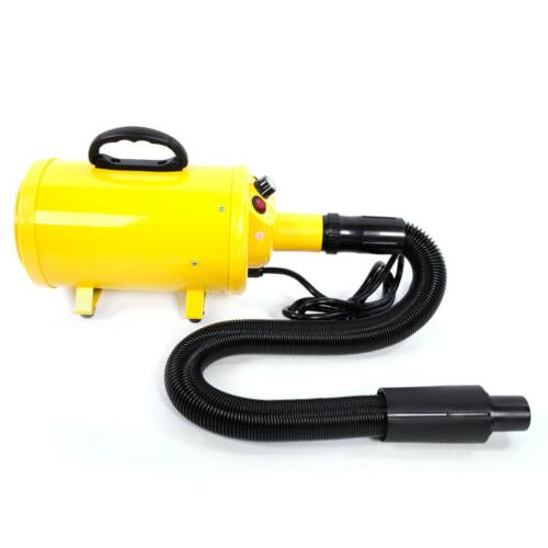 New Blow Dryer Pet Yellow