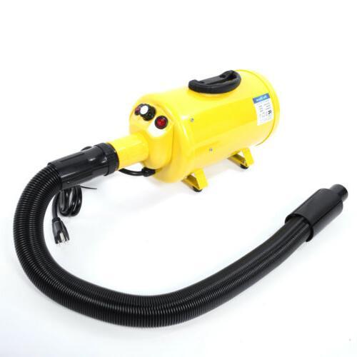 New Blow Hair Dryer Hairdryer Cat Yellow